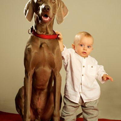 fotografo per bambini con cani